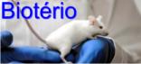Link para o biotério setorial